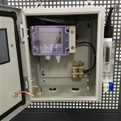 食品厂(蔬菜清洗)0-200PPM臭氧在线分析仪