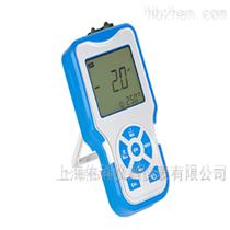 P6便携式酸度计