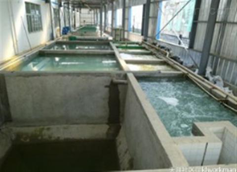 酸洗磷化污水处理方案