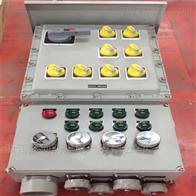 BXX-厂家定做管廊防爆检修电源配电箱