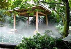 假山人造雾
