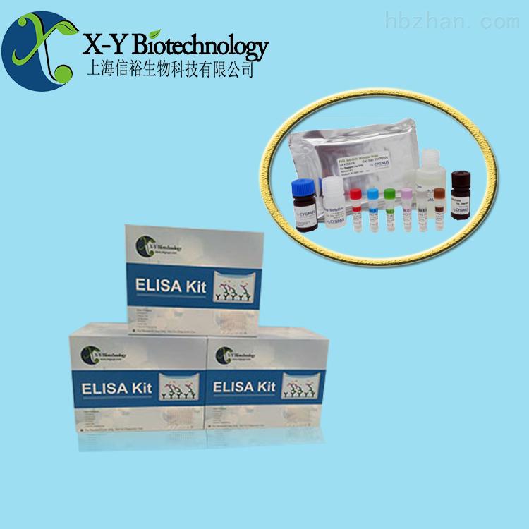 检测试剂盒