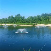 QS-TP-2200提水式喷泉曝气机扬水景观河道人工湖增氧