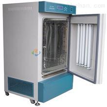 250升低温光照培养箱可编程
