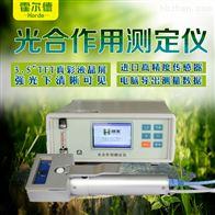 HED-GH10光合作用测定仪器