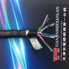 DDZ-HYA电缆结构