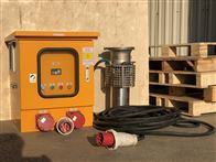 ZQWQ大流量便携式移动排水泵