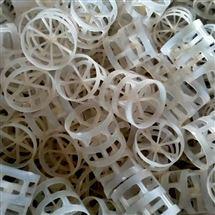 DN25 DN38 DN50 DN80塑料鲍尔环填料*