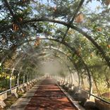 植物園噴霧降溫