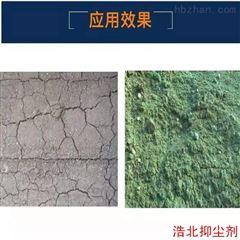 生态环保结壳抑尘剂