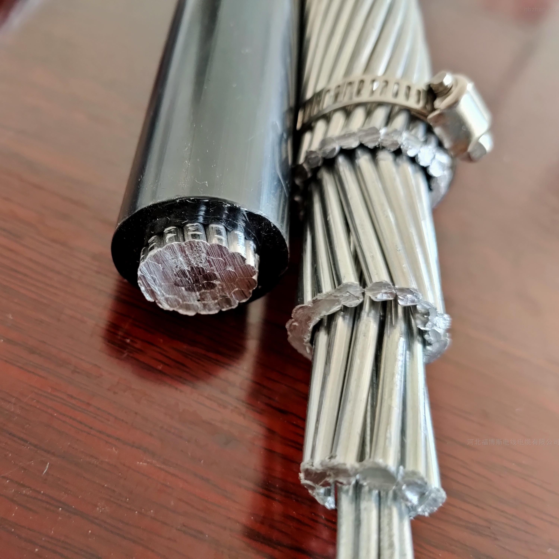 现货钢芯铝绞线销售厂家95/20