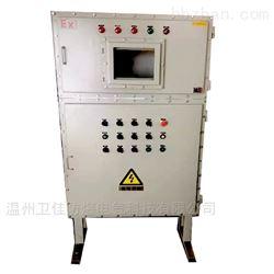 BXMD-T非标定制带观察窗口防爆配电柜电源柜