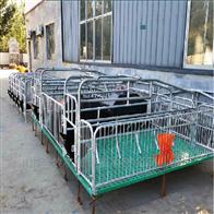 养猪设备厂家母猪产床