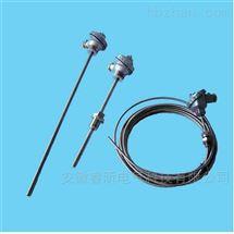 WRPK2-561圆接插式铠装双铂铑热电偶