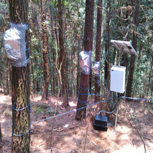 茎流(液流)测量系统