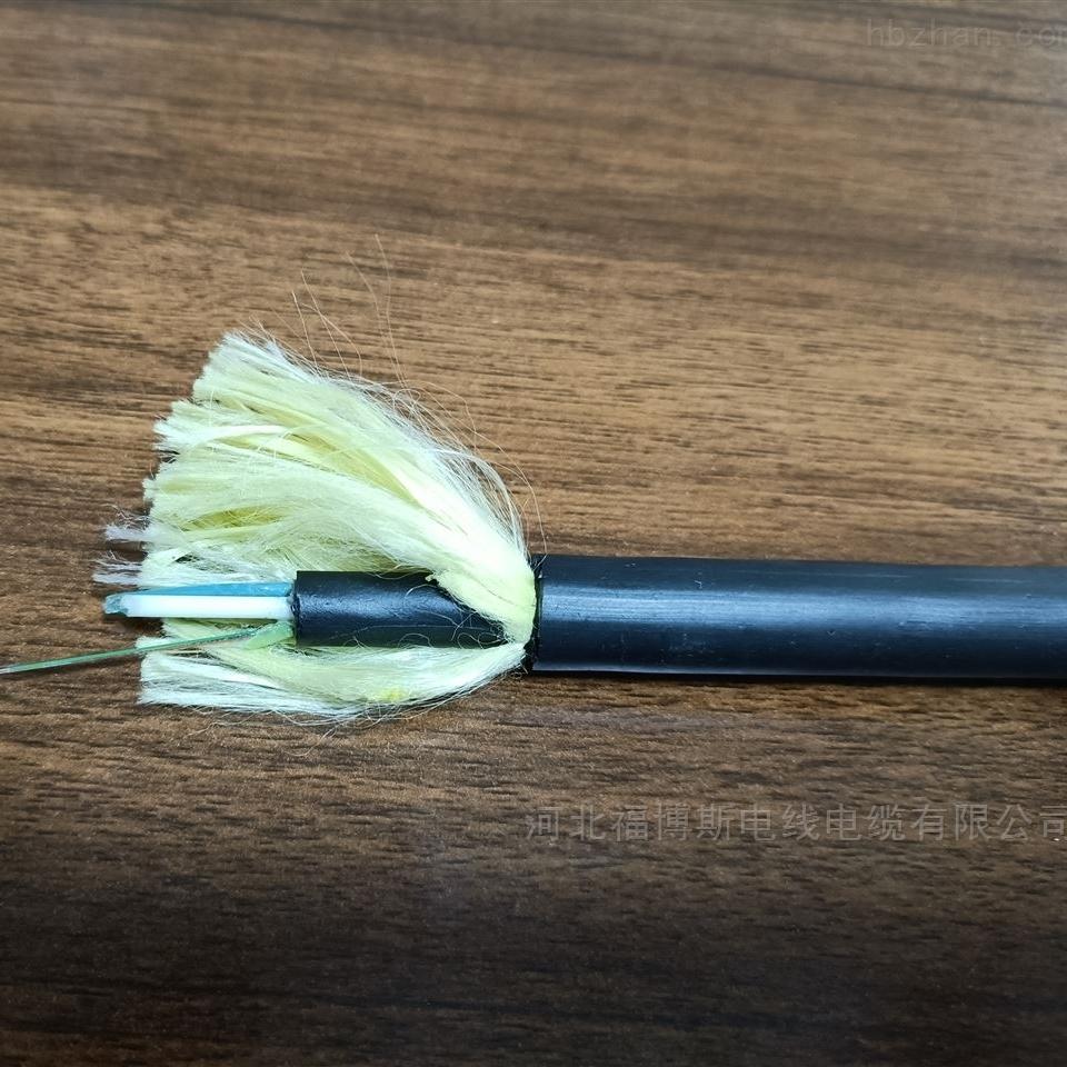 ADSS自承式光缆12芯现货库存