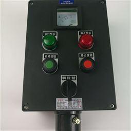 2灯2钮一电流表挂式防爆防腐操作柱