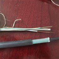 厂家现货GYFTZY非金属阻燃光缆12B1批
