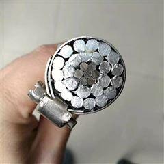价格JLB40A-120铝包钢绞线