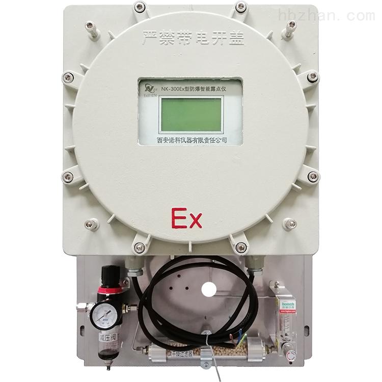 防爆式磁氧分析仪