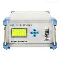 NK-401A便携式多组份气体分析仪