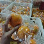 柠檬鲜果集成式袋机套袋机
