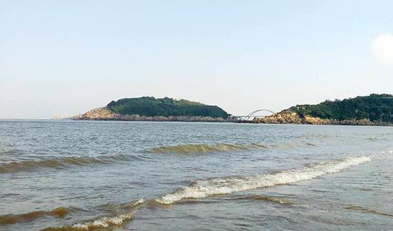 福建省人民政府辦公廳關于印發進一步加強海漂垃圾綜合治理行動方案的通知