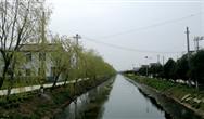 江苏省滨海县八巨镇生态河道治理成效明显