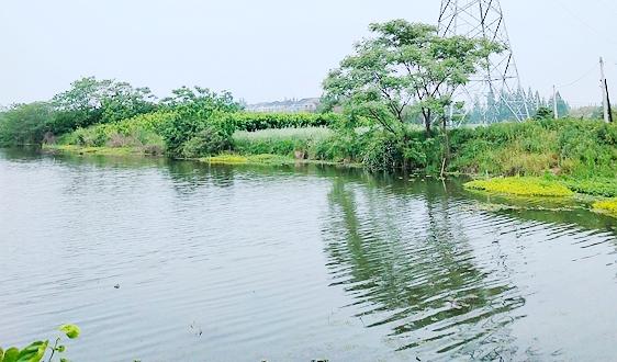 《河南省2021年污染源自动监控设施建设方案》已印发