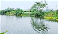 生態環境部印發通知要求各地加強2021年汛期水環境監管工作