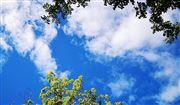 襄陽高新技術產業開發區大氣污染防治精準管控平臺及環保管家咨詢服務招標