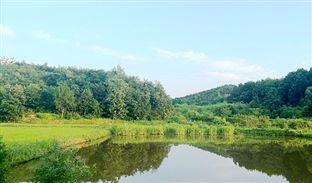 常州武进:聚焦治污提质增效推动生态环境保护向纵深发展