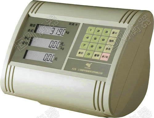 XK3190-A25地磅显示器