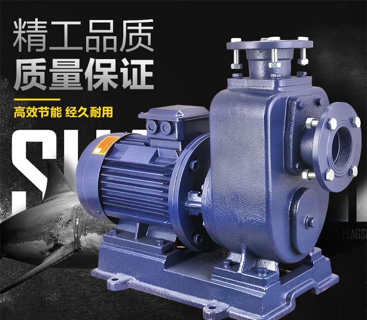 ZWL自吸泵