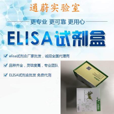 大鼠维生素B6检测试剂盒